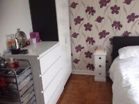 Large bedrooms in luxury Queen's Park House, two available