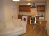 One Bedroom Cottage in Tain for rent