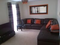 Immaculate large 1 Bedroom apartment for rent