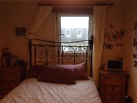 Short Term Festival Let - Large Double Room in cosy Leith flat
