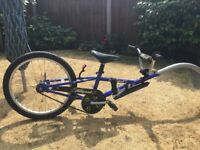 Child's Allycat Tag Along Trailer Bike