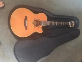 Takamine guitar En-30c rare and discontinued