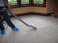 Professional Carpet Cleaning Care