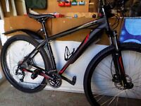 mountain bike brand new large 19in
