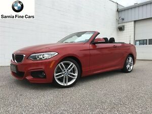 2017 BMW 2 Series 230i xDrive