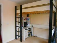 Single wooden loft bed