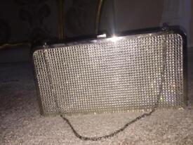 Accessorize Silver Satin Crystal Clutch Bag