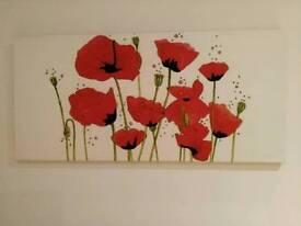 Large poppy canvas.