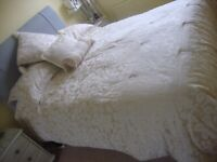 champagne coloured 5ft day bedding, valance cushion, pillow shams and quilted cover