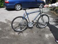 2 bicycles, Mens 'Cutlass' mountain bike, Ladies 'Raleigh, Classic Pioneer' both New condition