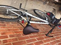 Raleigh max adult unisex mountain bike good condition