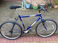 Condor Bikes Bicycles For Sale Gumtree
