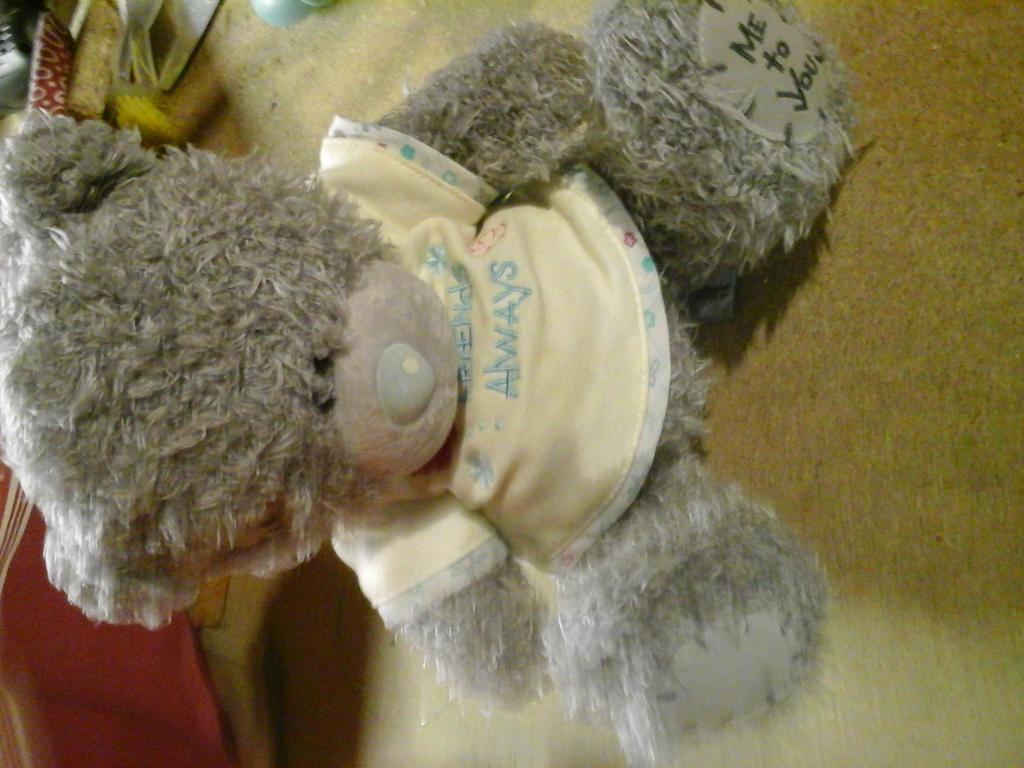 me to you teddy bear