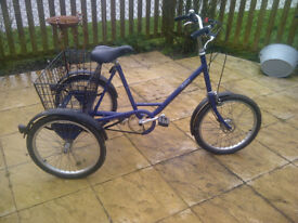 Pashley Unisex Tricycle in Blue