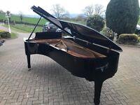 Yamaha CFX Concert grand piano | Belfast Pianos |