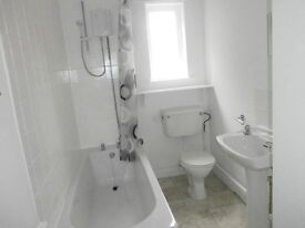 Spacious two bedroomed first floor unfurnished carpeted flat to rent in Heeley Bottom Sheffield