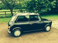 Classic Jet Black Rover Mini