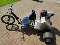 Adult fun three wheel bike
