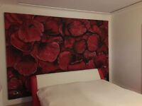 Mural painting, canvas art, paintings made to order, etc