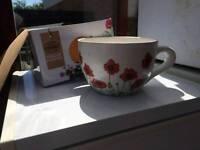 Plant pot teacup style