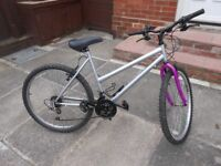 Adult Size Ladies Mountain Bike - Large 19 Inch Frame