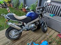 Skyteam PBR 50cc for sale.