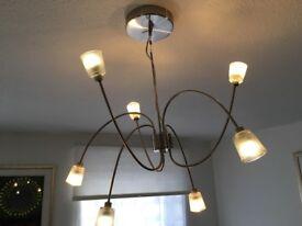 Modern LED Ceiling light chandelier
