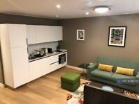 1 bedroom flat in Lower Ground, London, NW1 (1 bed) (#985758)