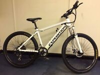 Electric Mountain Bike With Hidden Battery