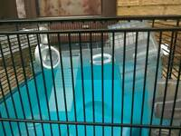 Hamster or gerbils cage with tubes