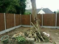 Garden landscape maintenance