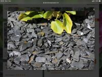 Free graphite grey slate garden chips 20mm (bulk bag)
