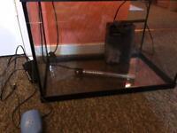60 L fish tank