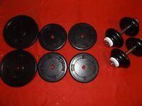 Over 100 kg standard cast iron weights