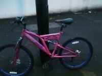 Dunlop medium size mountain bike bicycle nearly new condition 188 speed 24 inch wheels