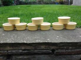 SET OF 9 CERMER POTS & CO LEMON RAMEKINS 9 CM