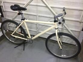 Flat bar fixie (coaster) single speed bike