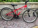 apollo mountain bike