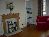 Short Let - up to 3 months only (June - August) - spacious 1 bedroom flat in central Edinburgh