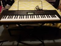 Casio LK-160 Electric Key Lighting Keybord with Stand and box