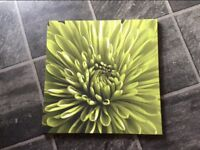 Green flower canvas picture, 19x19""