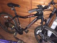 Good condition Adult Men's Diamondback Mountain Bike