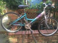 Raleigh starz girls Mountain bike