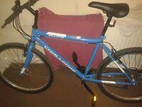 """Umulator challenge 26"""" bike"""