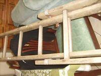 Wooden 22 Rung Ladder