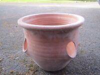 Terracotta plant pot.