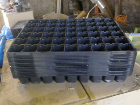 80 plus plug trays for raising young plants/seedlings/cuttings. New and unused.