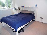 HUGE 3 BEDROOM GARDEN HOUSE IN BRIXTON FREE PARKING!!!!