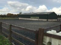 New Livery yard opening 1st December