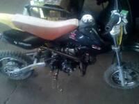 Petrol pit bike